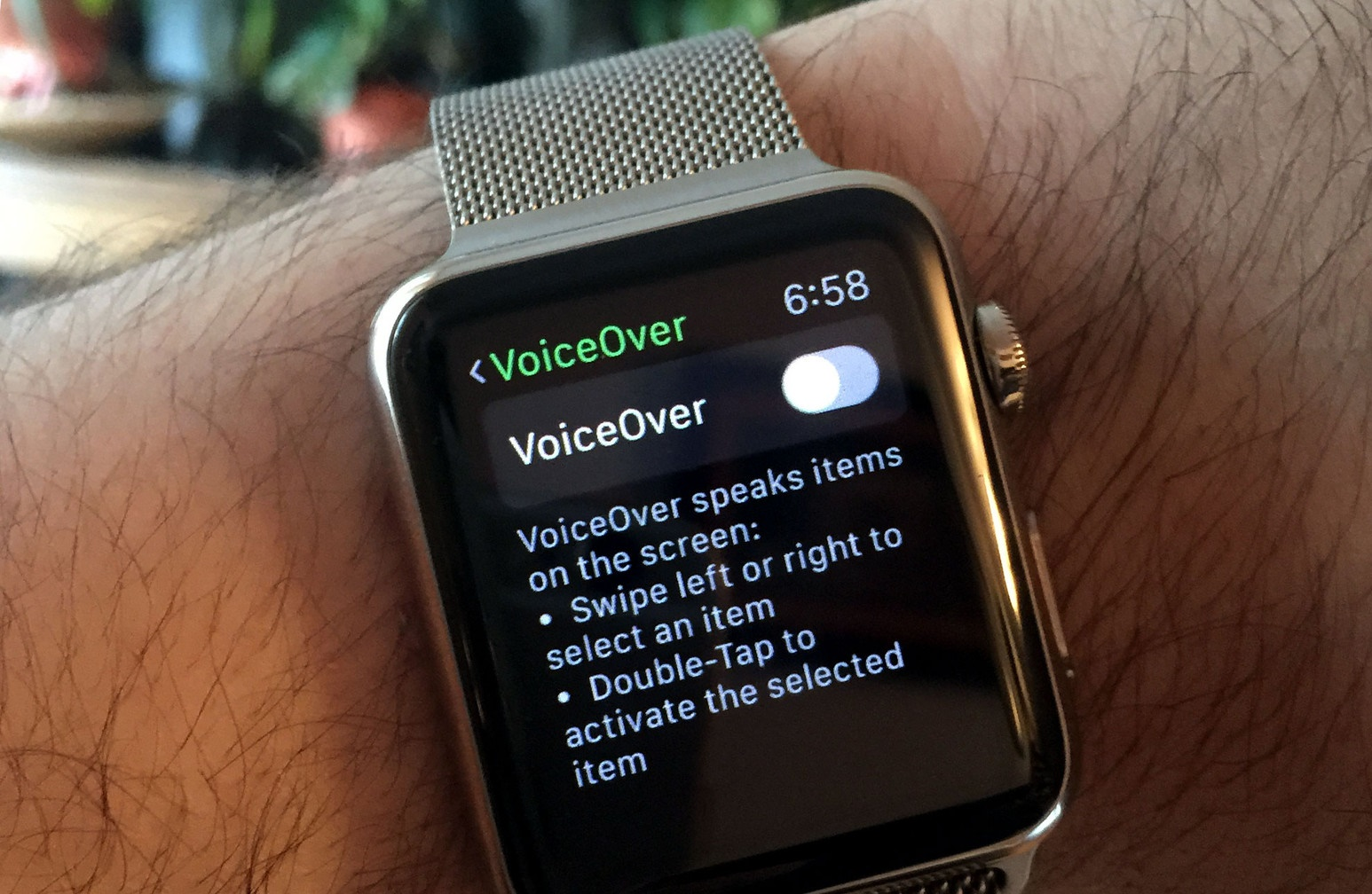 How to setup and use VoiceOver on Apple Watch
