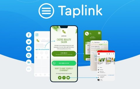 Taplink Features